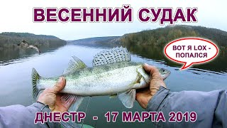 Весняний судак на дністровському водосховищі