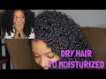 Moisturizing Natural Curly Hair Routine | DRY Curly Hair to MOISTURIZED Curly Hair