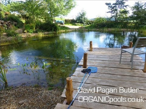 How To Make An Organic: Natural Pool In The Woods