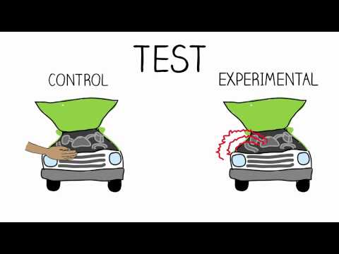 Research Methods: Experimental Design
