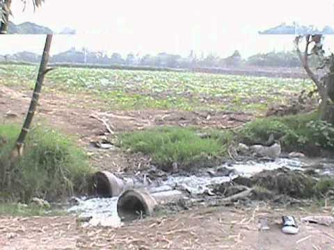 riego con aguas residuales