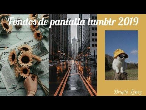 GRANDIOSOS FONDOS DE PANTALLA TUMBLR 2020 | BRIGITH LÓPEZ