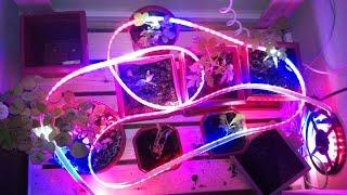 Светодиодная лента на 20 метров. SMD 5050 600Leds RGB LED Strip.(Распаковка товара из Китая. Обзор и тест. 20M SMD 5050 600Leds RGB LED Strip and 44 Key IR Remote Control and 12V 10A Power Supply 30Leds/m ..., 2014-10-12T06:29:03.000Z)