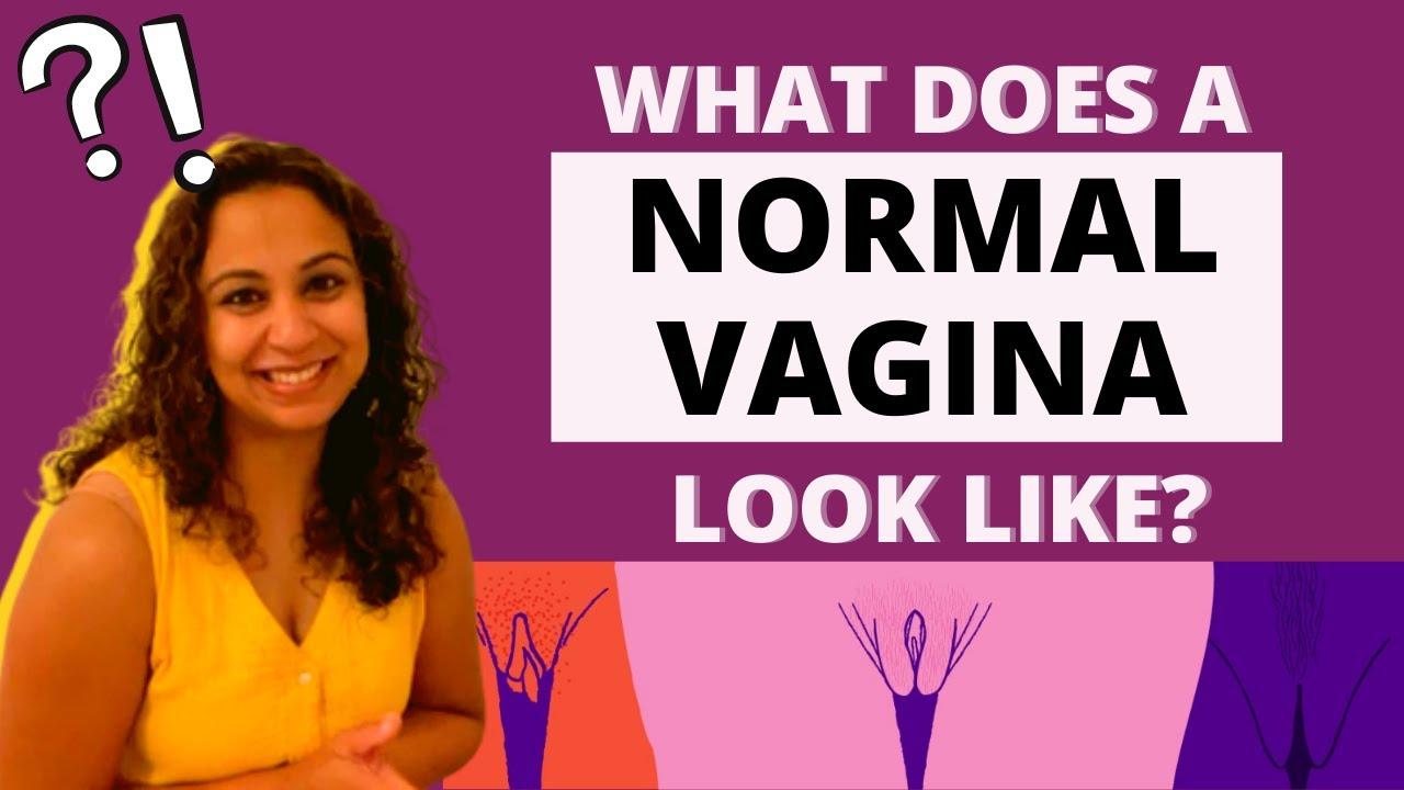 Vagina The Most