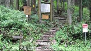 ぎふ百山 蕪山g036 2010 08 13