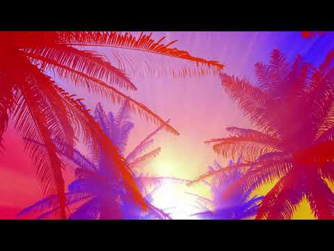 1 Hour Visual In Full HD / Tropical Sunset Background Loop
