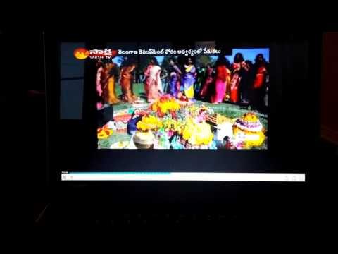 Bathukamma 2016 By Tdf Canada Sakshi Tv