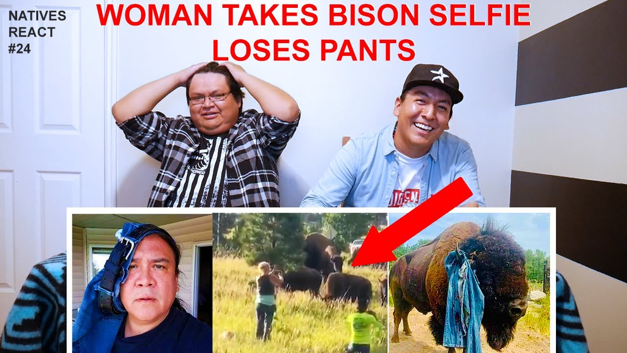 Download Bison Tosses Woman Out Of Her Pants - Natives React #24