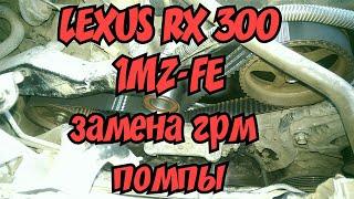 Lexus rx 300,Toyota harrier,1mz-fe.Заміна ГРМ,помпи.