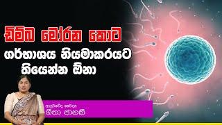 ඩිම්බ මෝරන කොට ගර්භාශය නියමාකරයට තියෙන්න ඕනා | Piyum Vila | 08-10-2019 | Siyatha TV Thumbnail