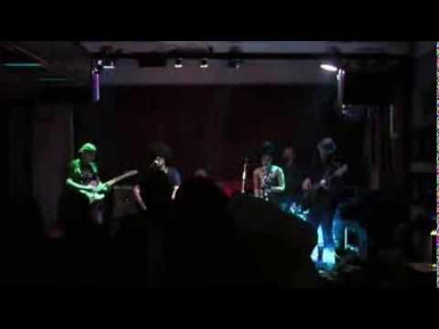 Honky Donkeys - Have Love, Will Travel, @ Banat Blues Caffe Session