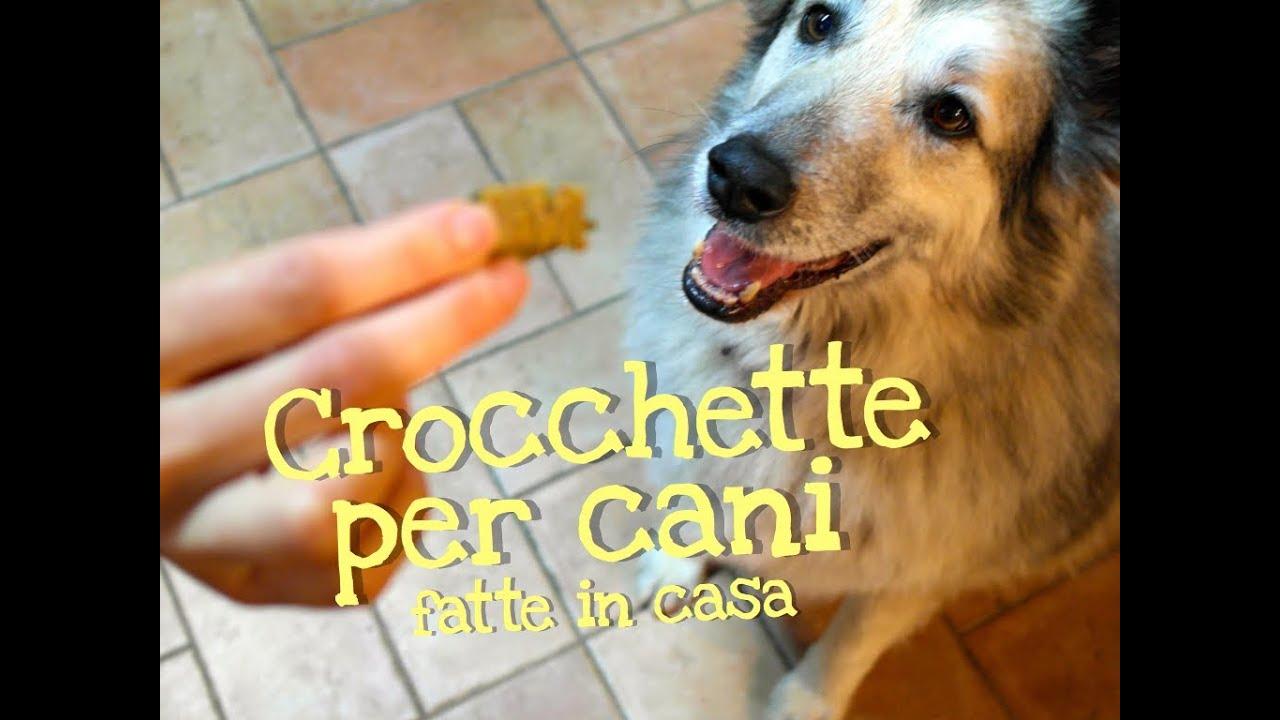 Crocchette Per Cani Fatte In Casa Da Benedetta Homemade Dog Food