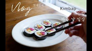 Vlog 13 맛있는 김밥 만들고 호수산책 라라와 행복…