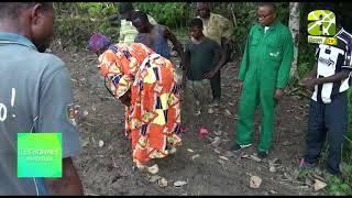 Agriculture Bio : L'exemple De Ndzana