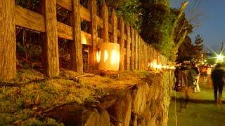 京都のライトアップに行ってみた。京都・嵐山花灯路(2016.12.10)