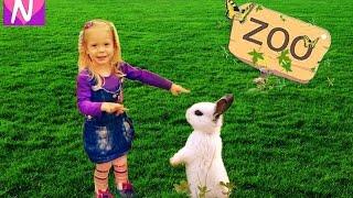 Маки Паки Контактный ЗООПАРК  ♡ ДЕТИ и ЖИВОТНЫЕ ♡ Настя в зоопарке ♡ PETTING ZOO ♡ FOR KIDS