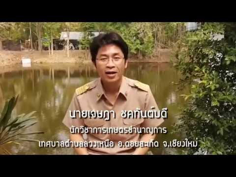 น้องๆเยาวชนใน ตำบลลวงเหนือ จังหวัดเชียงใหม่ เข้าเรียนออนไลน์ หลักสูตรเยาวชนไทย กู้ภัยโควิด19