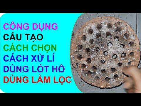 Tập 125: Cách dùng than tổ ong hồ cá nước trong vắt thật chi tiết