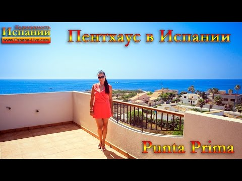 Commercial property in San Panteleev on the coast from the owners of inexpensive