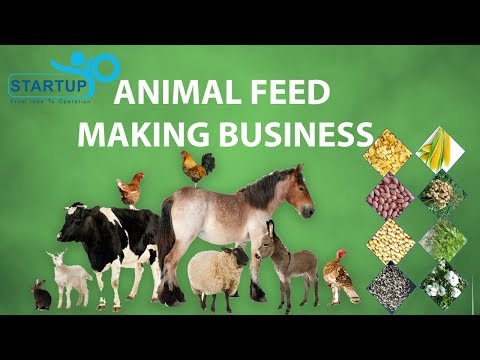Animal Feed Making Business - StartupYo
