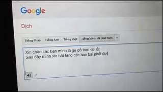 troll chị google dịch