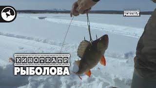 Зимняя рыбалка в Якутии. Щука на живца | Кинотеатр рыболова