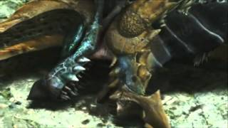 "[3DS] Monster Hunter 4 Ultimate -Zinogre ""Ecology""-"