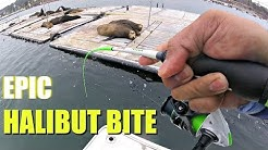 FISHING For Legal Halibuts In San Diego Bay Ft. Warbaits