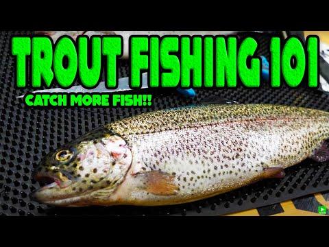 TROUT FISHING 101 - Beginners Guide To SUCCESS!
