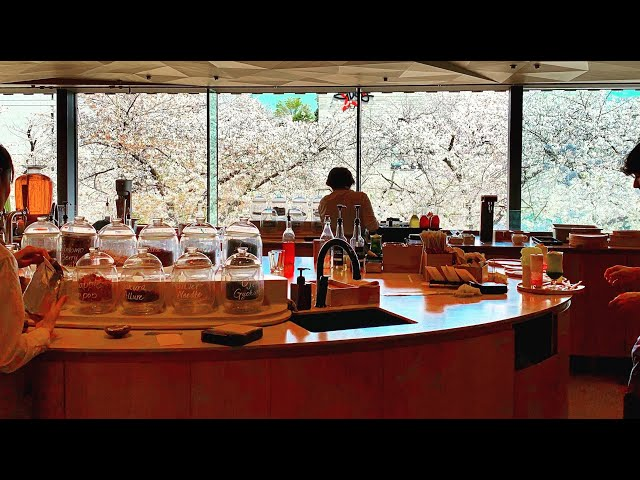 Starbucks in Japan〜The most beautiful in the world〜