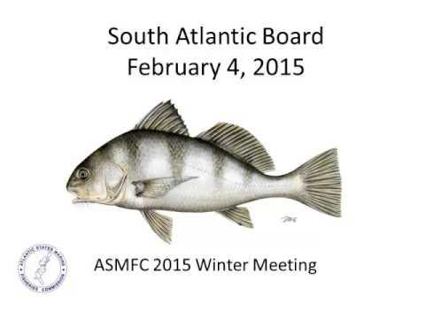 South Atlantic Board Proceedings Feb2015