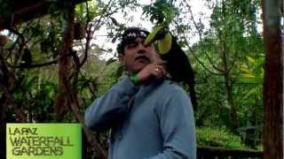 Costa Rica Travel Itinerary La Fortuna Arenal