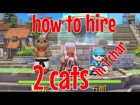 RAG: Ragnarok Mobile: 2 Cat pets at the same time! (Rank D skill Mercenary Pact required) (PvM)