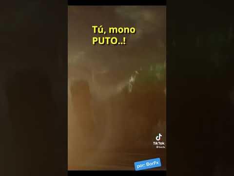 busquen kong vs godzilla pelicula en cuevana ya está disponible
