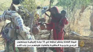 الفلاتة في تشاد يتنقلون مع ماشيتهم في المناطق الوسطى