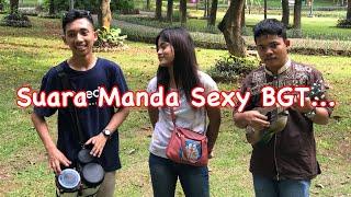 Sayang 2 - Manda Feat Trio Wok Wok...!!! Gendangny