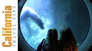 Long Beach Aquarium Tickets