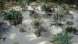 Хайфа, сады Бахаи.mpg(Прекрасное место в Хайфе,где расположен Всемирный Центр Бахаи - независимой мировой религии,насчитывающей..., 2010-05-08T12:52:08.000Z)