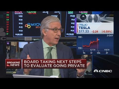 Tesla short sellers are shorting the game of being public: Former TrueCar CEO