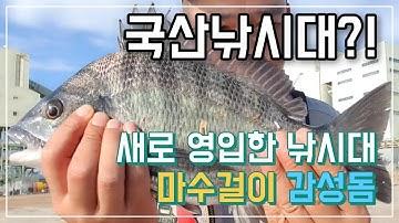 ggman - 새로 영입한 국산 낚시대로 감성돔 마수걸이 (fishing)