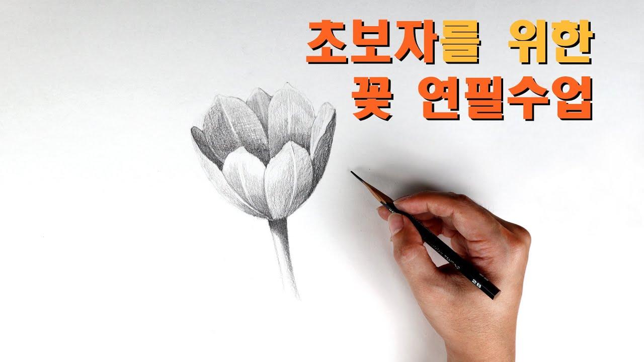 초보자를 위한 꽃 연필수업 / 기초소묘, 꽃그리기