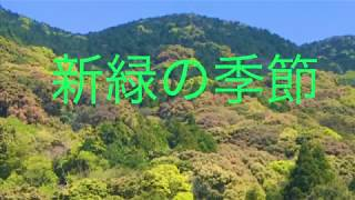 長崎平戸(春日集落) 新緑の頃/若草の丘.本間千代子