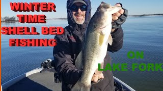 02 01 2020 Winter Shell Bed Fishing on Lake Fork