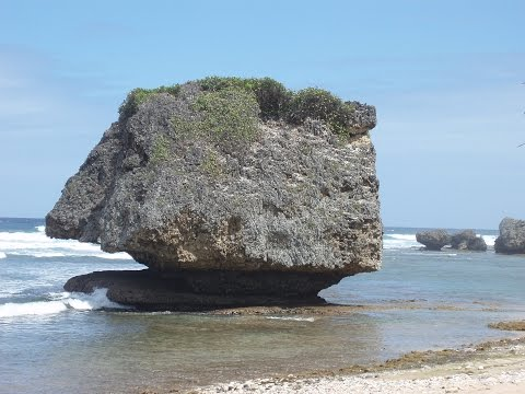Watching The Sea. Bathsheba Barbados