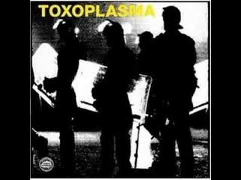 Toxoplasma-Polizeistaat