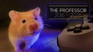 The professor | 2016 - 2018 | Agustin Tash