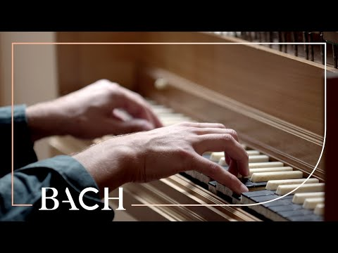 Alard on Bach WTC I Prelude and fugue in G minor BWV 861 | Netherlands Bach Society