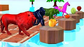 Farm Animals Swimming in Water Pool Learn Colors Animals Names & Sounds - Cartoon For Kidzee Rhymes