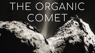What did ESA's Rosetta-Philae discover at comet 67P/Churyumov–Gerasimenko?