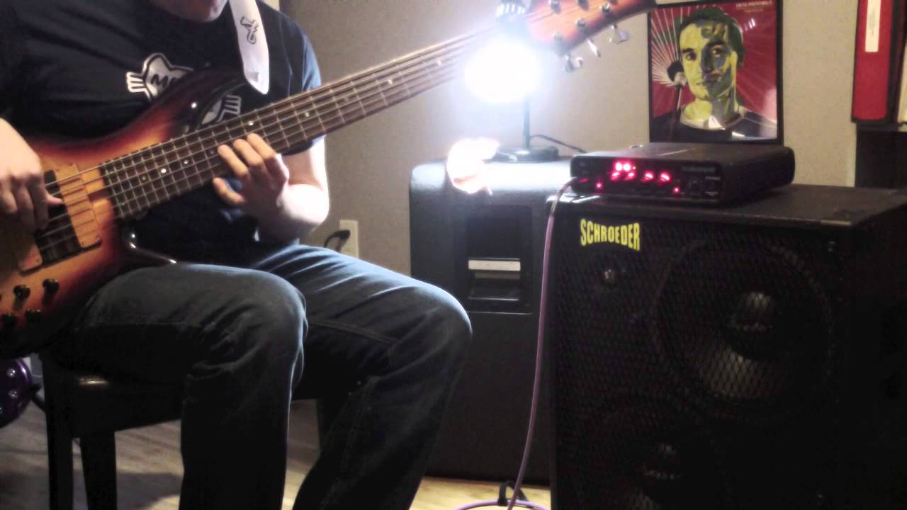 Ultimate Basses: Schroeder 1212L Bass Cabinet